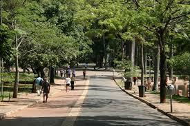 parque municipal pessoas caminhando3
