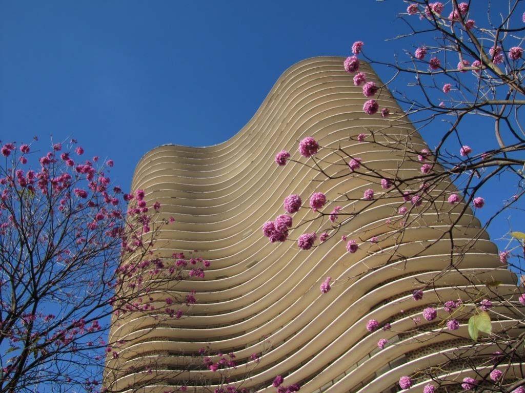 Ed-Niemeyer-BH